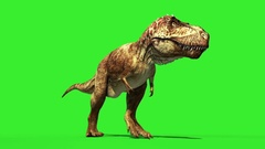 T Rex Tyrannosaur Feathered Run Down Loop Jurassic World Dinosaurs Green Screen Stock Footage