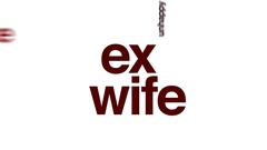 Ex wife animated word cloud, text design animation. Stock Footage