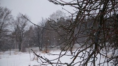 Winter landscape with falling snow Stock Footage
