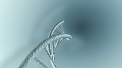 Animation of genetic DNA Stock Footage