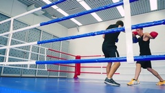 Boxers fight and move in the ring. Stock Footage