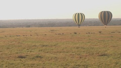 AERIAL: Hot air balloons safari floating above herd of zebras on savanna field Stock Footage