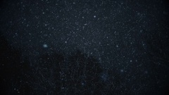 Snowflakes falling (Color correction) Stock Footage