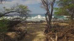 Aerial Jungle Paradise Beach. Maui Flying Down the Path to Beach and Girls 02 Stock Footage