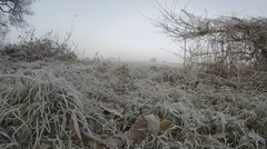 Low track over frosty grass into field - Slo Mo ready 50fps Stock Footage