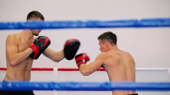 Boxer fulfills blows at boxing paws. Stock Footage