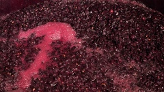 Harvest red vine-Cellar, Worker processing freshly harvested grapes in barrel Stock Footage