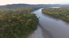 Aerial view of the rainforest canopy and the Rio Napo at dawn Stock Footage