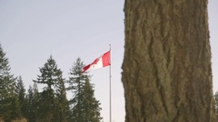 Flag of Canada at Burnaby Mountain Park Stock Footage