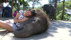 The joy of companionship with a baby elephant. Thailand. Phuket. Stock Footage