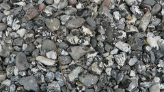 Flintstone at rugen island chalk rock cliff Stock Footage