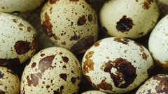 Nice and very helpful - quail eggs. Diet and healthy eating Stock Footage