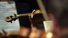 Stringed instrument row Stock Footage