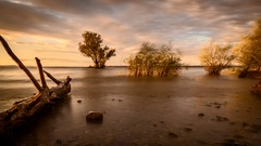 4K Time Lapse Beach Lake Strom Clouds Drift Wood Reed Island Trees Stock Footage