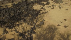 Aerial View. Isolated Deserted Beach. Maui Tilt Up Beach To Reveal Ocean Stock Footage