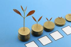 Young plant grown to stack gold coin in business growth concept. Stock Photos