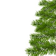 Green lush spruce branch. Fir branches. Isolated on white illustration Stock Illustration
