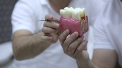 Two dentists having a professional discussion with teeth model Stock Footage