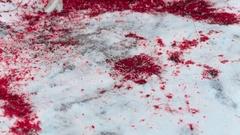 Blood splatter on the snow Stock Footage