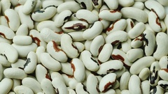 Background from white beans. Healthy organic food Stock Footage
