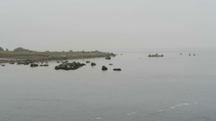 Group of cormorant resting on rocks at harbor of schaprode (Rugen Island) Stock Footage