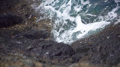 Crab crawling on the stone shore Stock Footage