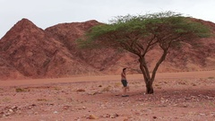 Young woman found the green tree in the desert Stock Footage