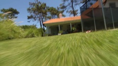 Animal POV Animal point of view Dog perspective. Stock Footage