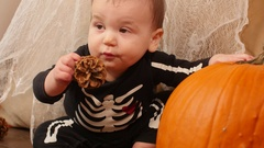 Toddler boy with skeleton costume plays with pinecones and pumkin Stock Footage