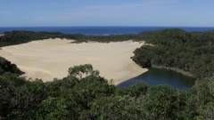 Lake Wabby swallowed by sand dune on Fraser Island Stock Footage