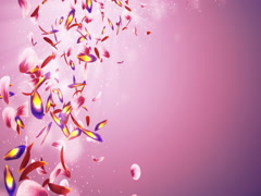 Falling Romantic Red Pink Purple Flower Petals Bokeh Placeholder Loop 4k Stock Footage