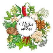 Vector hot round design with spices and herbs Stock Illustration
