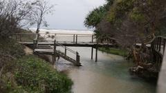 Beautiful Eli creek on Fraser Island Stock Footage