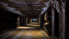 Wine bottle and barrels in winery cellar Stock Footage