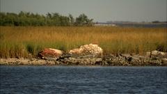 Pan across cemetary coastal erosion Stock Footage