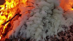 Close shot of a pile of leaves burning Stock Footage