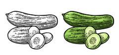 Fresh green cucumbers - whole, half, slices Stock Illustration