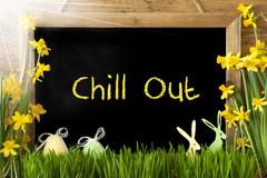 Sunny Narcissus, Easter Egg, Bunny, Text Chill Out Stock Photos