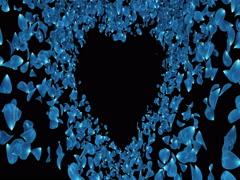 Blue Rose Sakura Flower Petals In Heart Shape Alpha Matte Placeholder Loop 4k Stock Footage