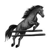 Horse jumping over barrier equine sport horserace Stock Illustration
