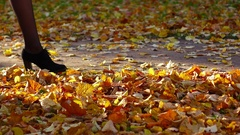 Elegant woman legs slowly go at autumn park path, touch yellow leaves Stock Footage