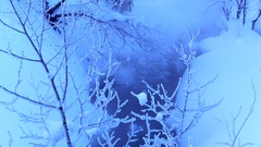 Rimed trees, Hokkaido, Japan Stock Footage