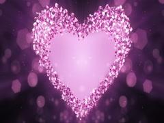 Pink Rose Sakura Flower Petals In Heart Shape Alpha Matte Loop Placeholder 4k Stock Footage