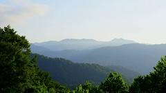 Shirakami Mountains, Aomori Prefecture, Japan Stock Footage