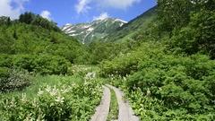 Chubu-Sangaku National Park, Nagano Prefecture, Japan Stock Footage