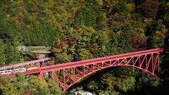 Sagano Scenic Railway, Toyama Prefecture, Japan Stock Footage