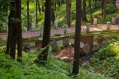 Tsaritsino park - Russia Moscow Stock Photos
