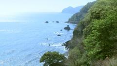 Sea coast, Japan Stock Footage