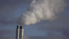 Chimney smoke and bird flying in Slowmotion Stock Footage