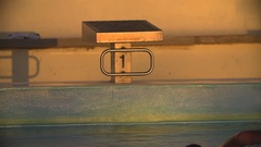 Swimmer Racing Celebrates being number one Stock Footage